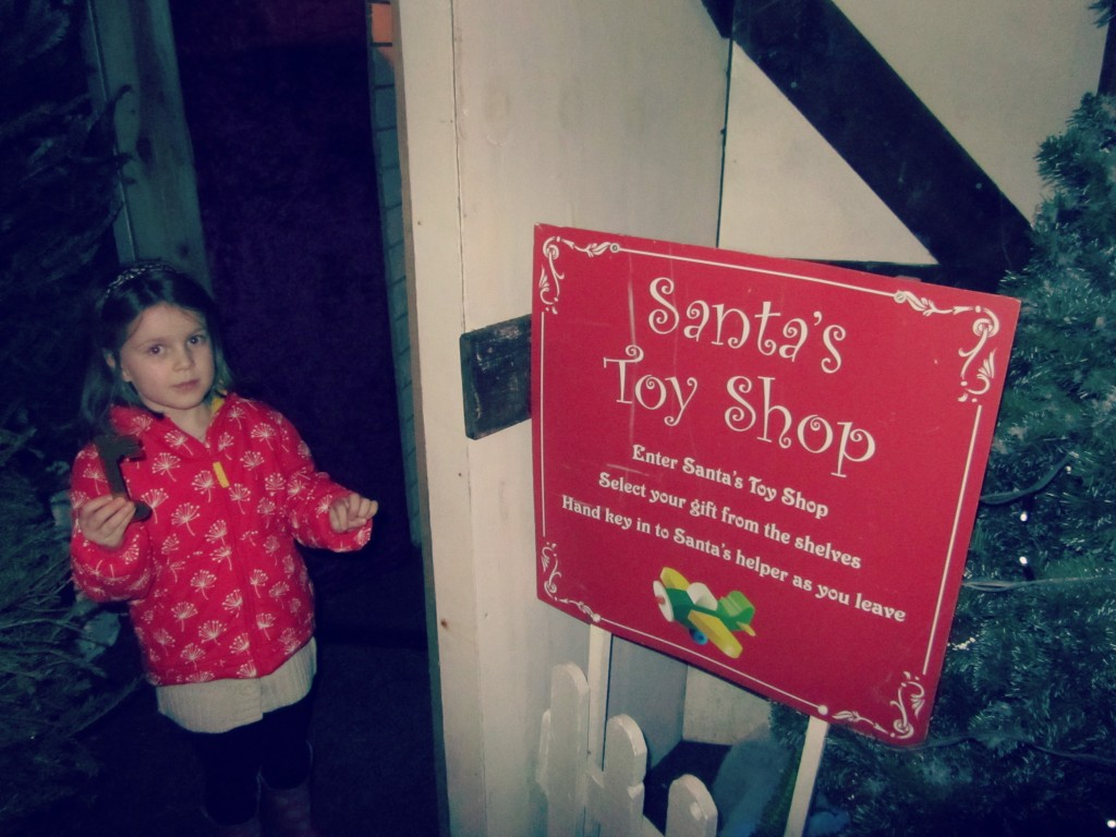 Hatton Christmas toy shop