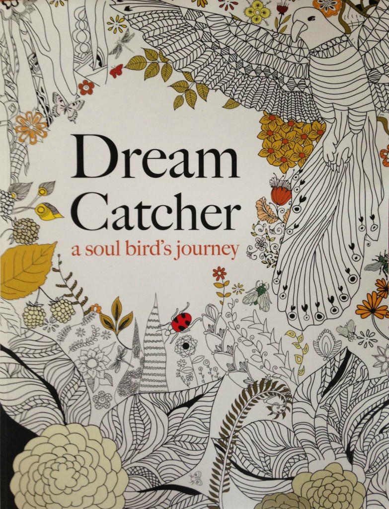 dream catcher colouring book