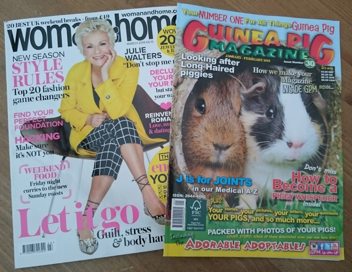 Magazines read in January