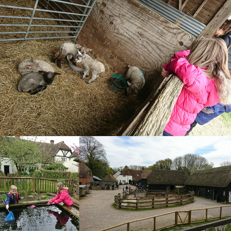 Manor Farm and Country Park