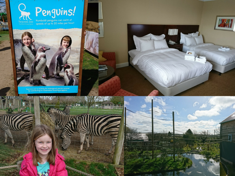 Stay Play Explore Break - Twycross Zoo and Leicester Marriott