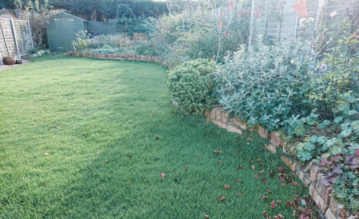 7 Simple Ways To Improve Your Garden This Autumn